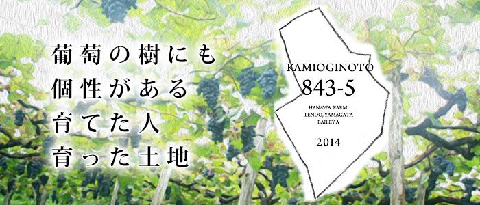タケダワイナリーKAMIOGINOTO(かみおぎのと)843-5